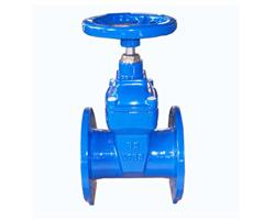 DIN CI Resilient-seated Flanged Gate Valves